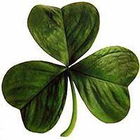 200px-Irish_clover